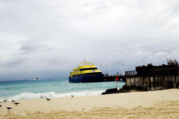 """""""是世界著名的潜水和旅游胜地。是墨西哥最大的岛屿。等以后学会了游泳再来这里潜水~但是不便宜_卡门海滩""""的评论图片"""