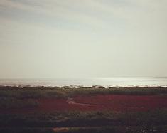 滨海之城——营口