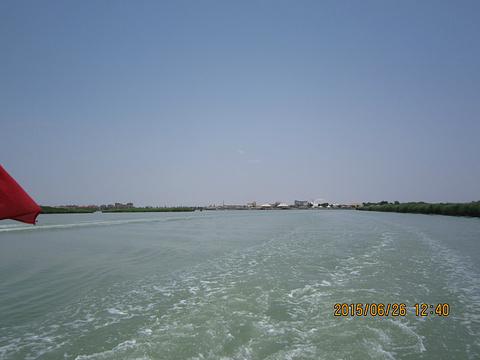 沙湖生态旅游区旅游景点攻略图
