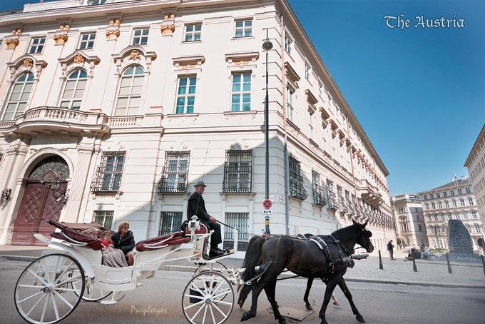 维也纳老城区街景图片