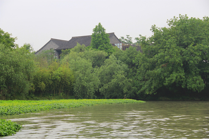 西溪国家湿地公园图片