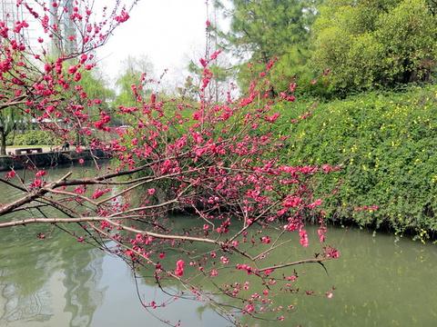 绍兴古城旅游景点图片
