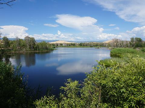 白沙湖旅游景点图片