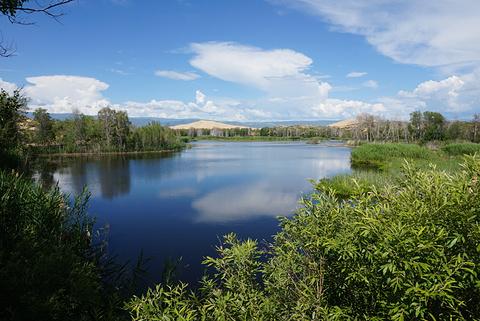 白沙湖的图片