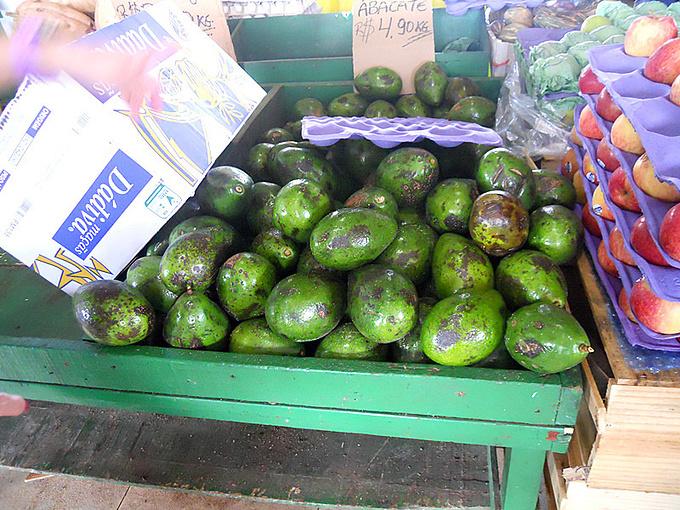 玛瑙斯市集贸市场图片