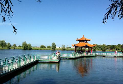 兴凯湖的图片