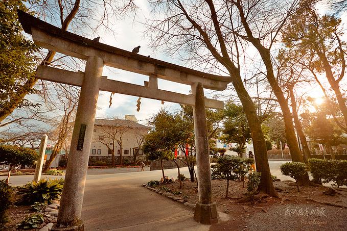 北口本宫富士浅间神社图片