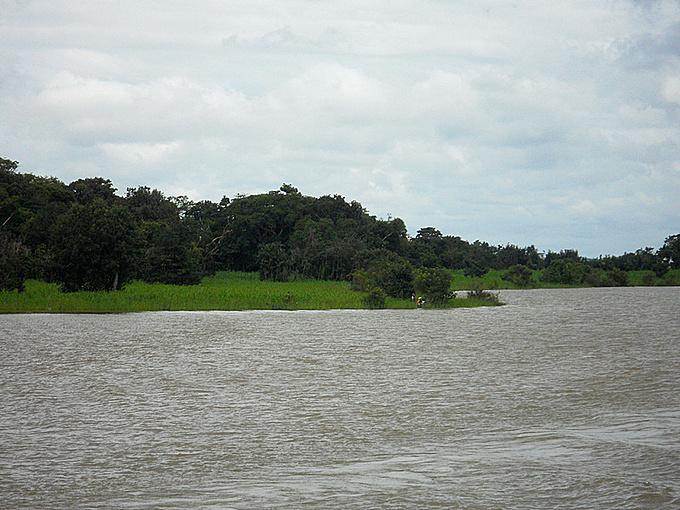 两河交汇图片