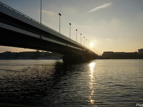 多瑙岛旅游景点图片