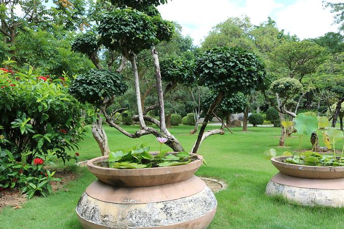 热带花卉园图片