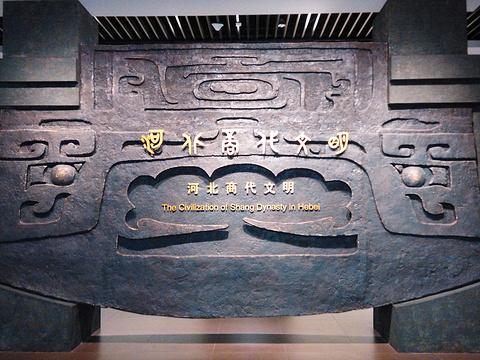 河北省博物馆旅游景点图片