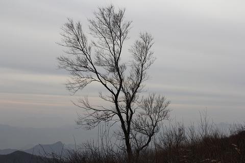 阳台山旅游景点攻略图