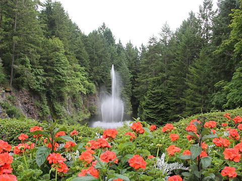 宝翠花园旅游景点图片
