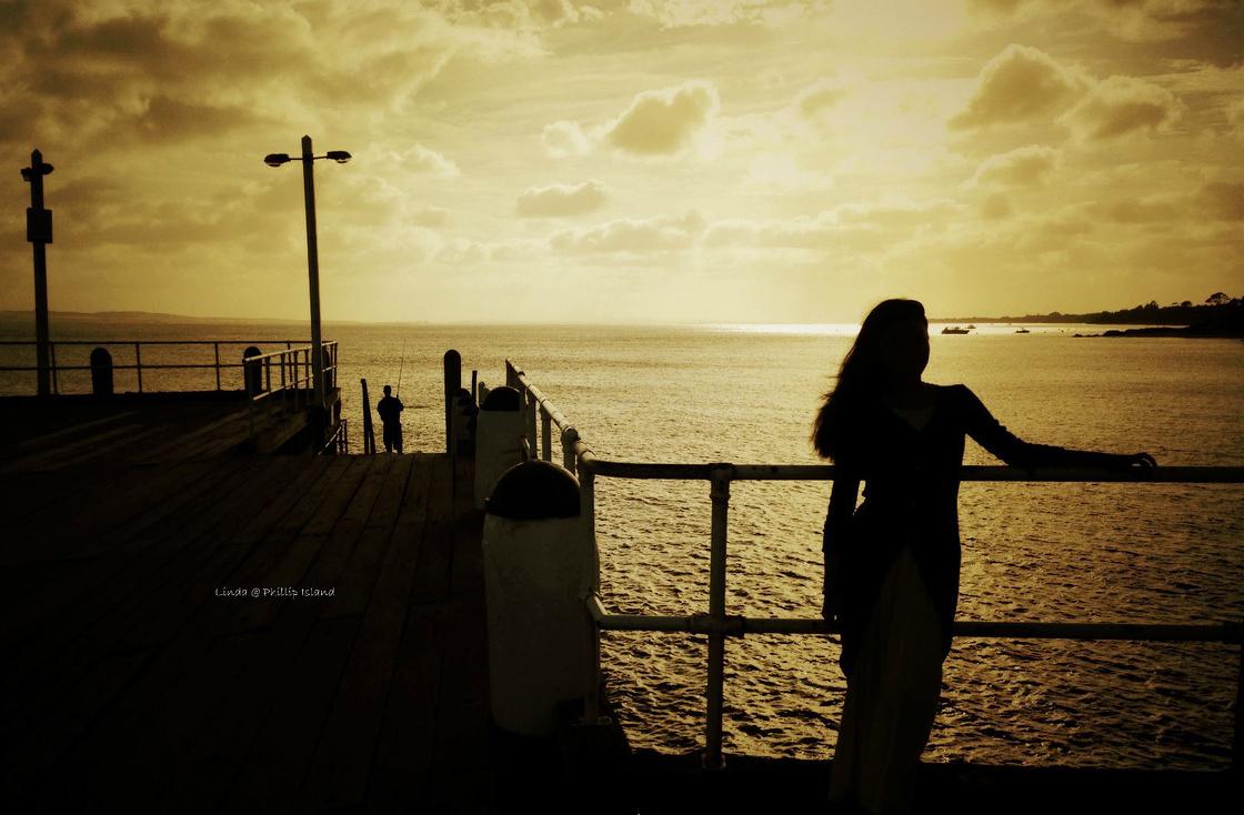 穿越澳洲~悠闲的时光,慵懒的考拉