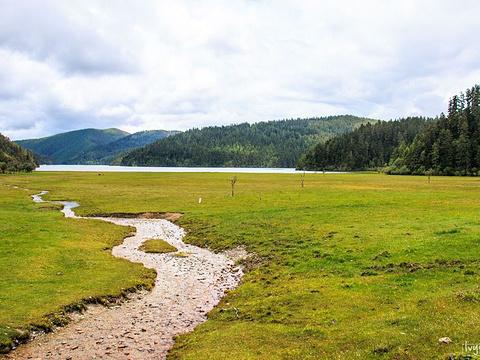 湖心岛旅游景点图片