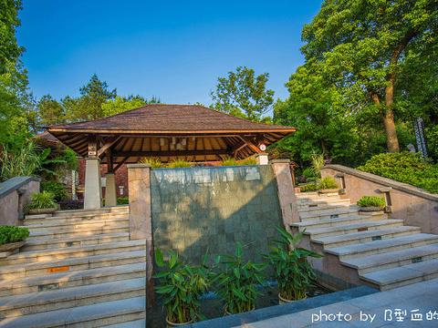 常州涵田半山温泉旅游景点图片