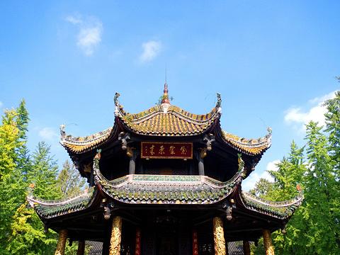 青羊宫旅游景点图片