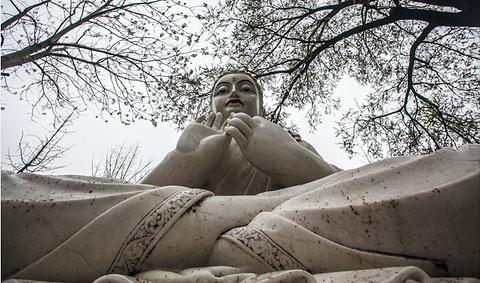 大明寺旅游景点攻略图