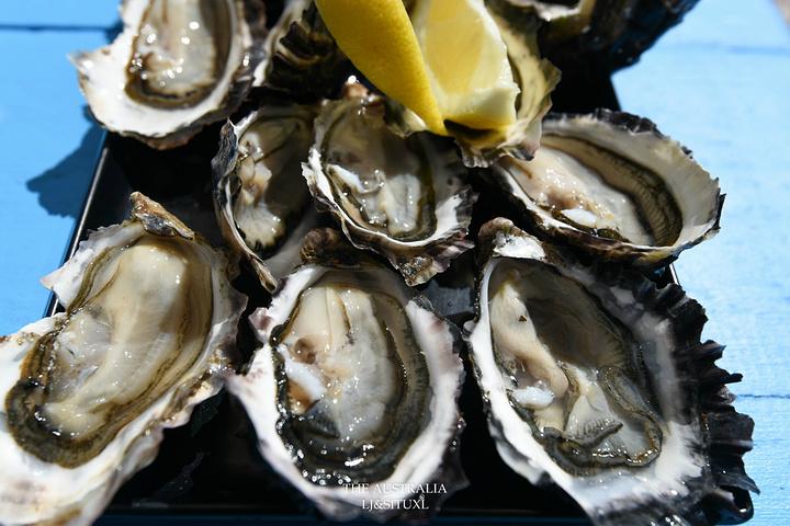 """""""马上叫来生蠔,个头不大,看上去不算饱满,但味道很鲜甜,吃后有回甘,也是好货。这个是生蠔农场的入口_Freycinet Marine Farm""""的评论图片"""