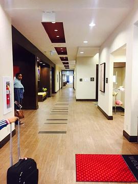哈利法克斯顿达特茅斯希尔顿欢朋套房酒店(Hampton Inn & Suites by Hilton Dartmouth - Halifax)旅游景点攻略图