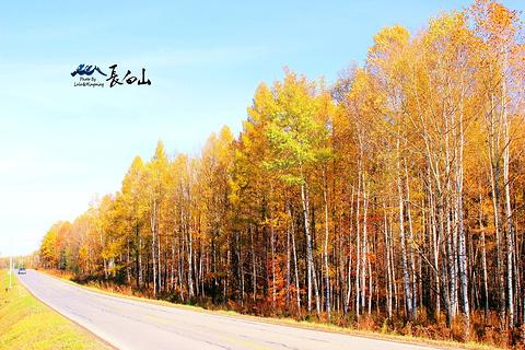 松江河森林公园