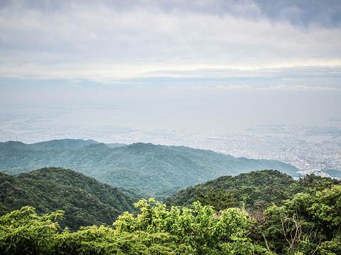 六甲山旅游景点图片