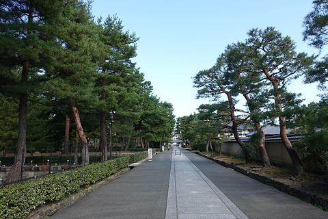 相国寺旅游景点攻略图