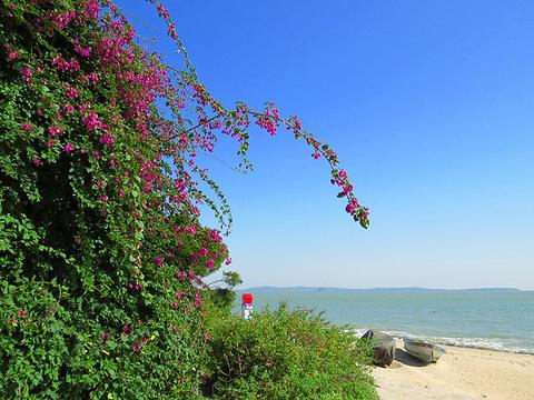 海韵台旅游景点图片
