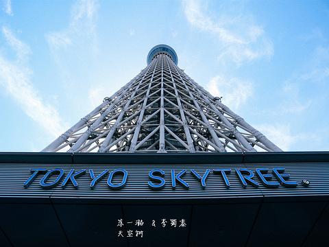 东京晴空塔旅游景点图片