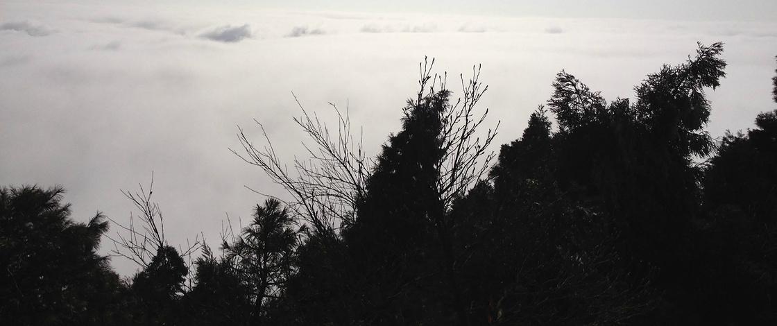 铿锵三人行——南岳衡山一日游