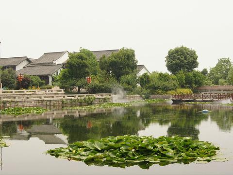 西溪湿地公园旅游景点图片