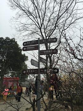 明孝陵旅游景点攻略图