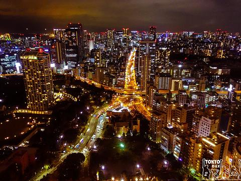 东京塔旅游景点图片