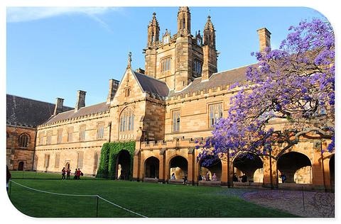悉尼大学旅游景点攻略图