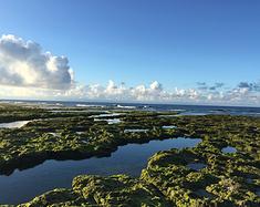 交换生台湾游记之绿岛