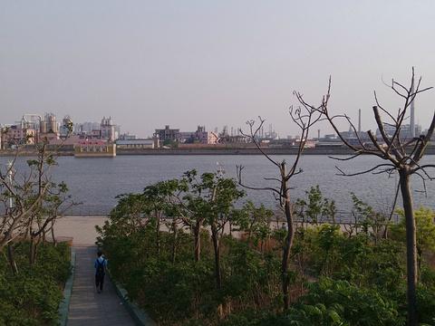 河滨公园旅游景点图片
