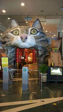 古晋猫咪博物馆旅游景点攻略图