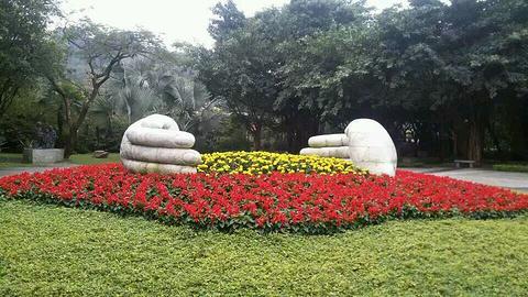 雕塑公园的图片