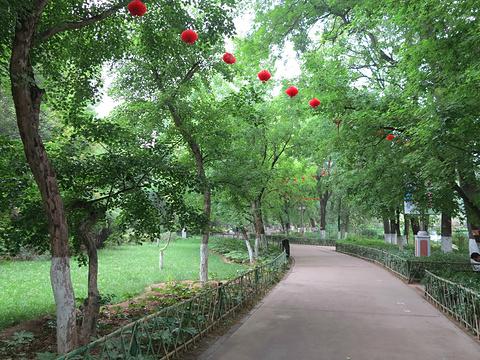 兴庆宫公园旅游景点攻略图