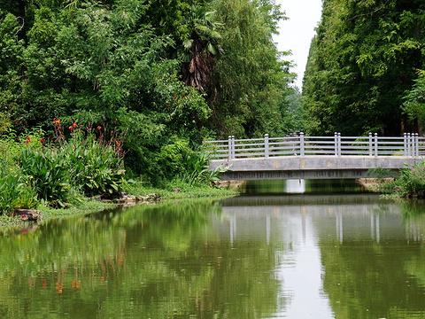 东平国家森林公园旅游景点图片