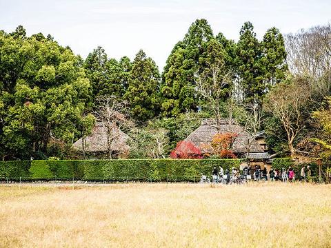 落柿舍旅游景点图片