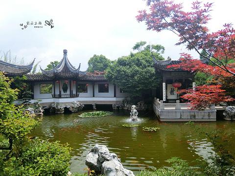 世界园艺博览园的图片