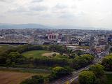 美瑛町旅游景点攻略图片