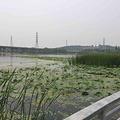 莲石湖湿地公园