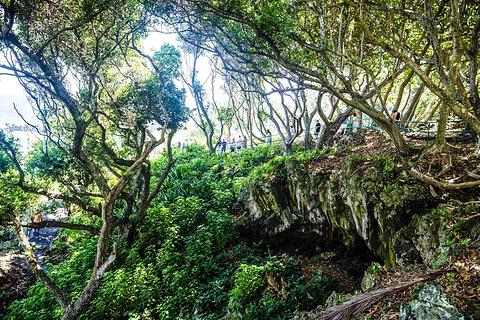 怀阿纳帕纳帕州立公园旅游景点攻略图