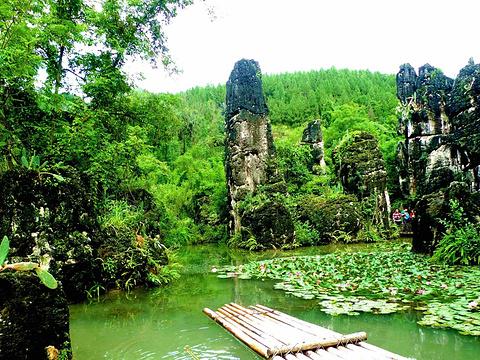天星湖(高老庄)旅游景点图片