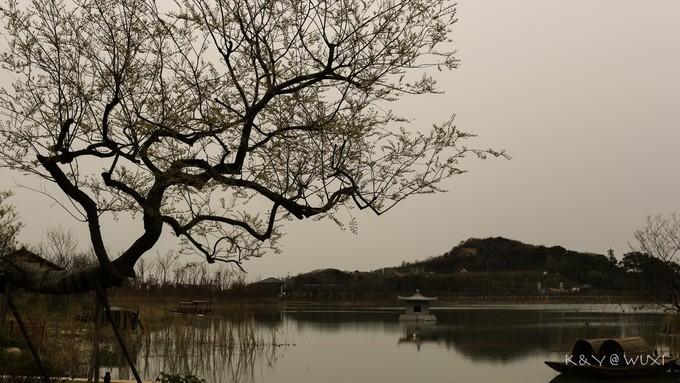 拈花湾图片