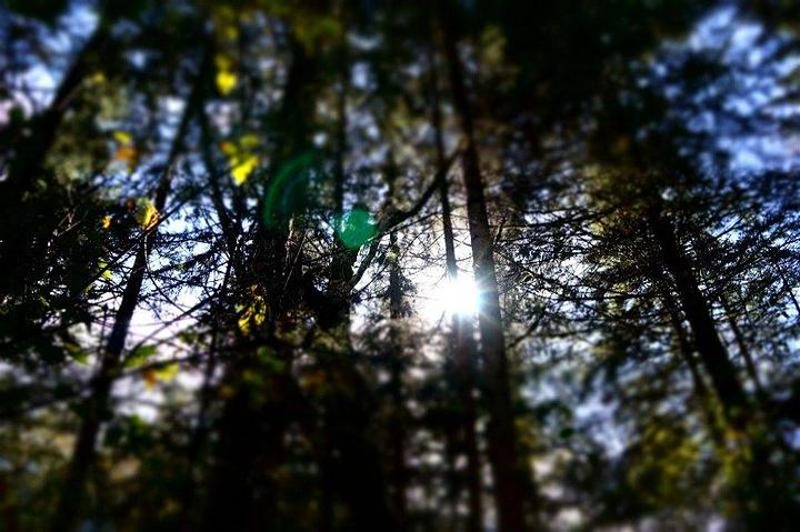"""""""特别是在阳光的照耀下,显得格外的美丽,对于一直生长在江南这一带的我来说,水,其实见过很多,但这..._五彩池""""的评论图片"""