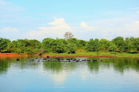 乌达瓦勒韦国家公园