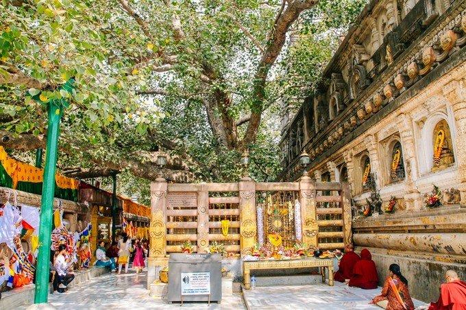 菩提伽耶的摩诃菩提寺图片